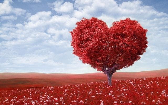 まとめ。20代の恋愛は視野を広く持つのが大事